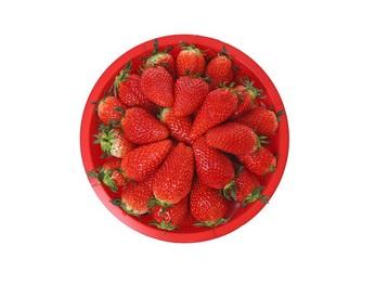 딸기(왕특)한다라이