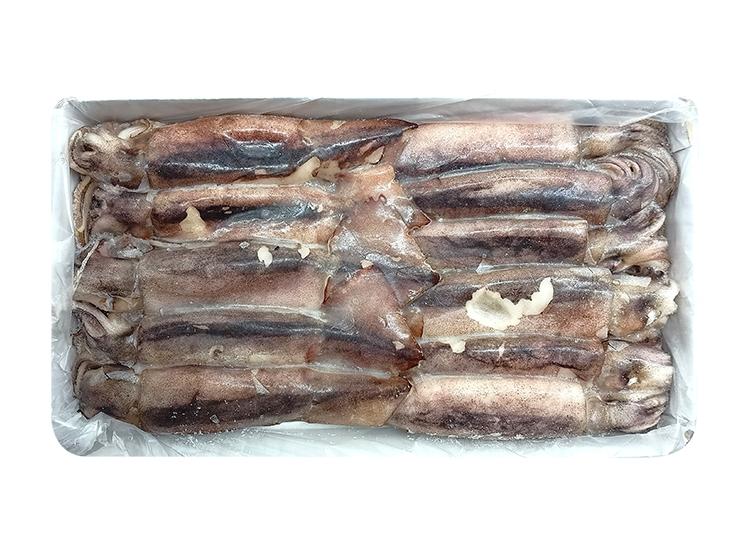 냉동오징어-box