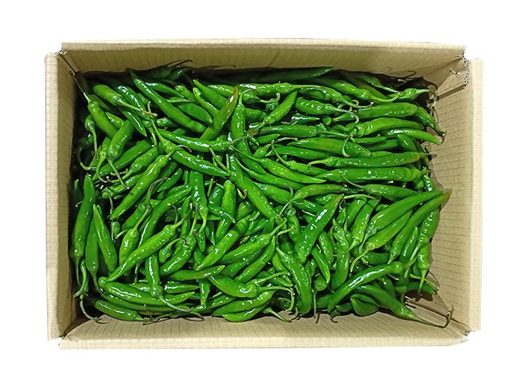 .농산)청량고추-특/box